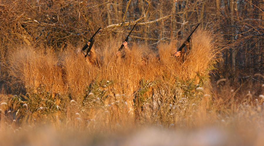 ALPS-blog-greatest hunting stories-duck
