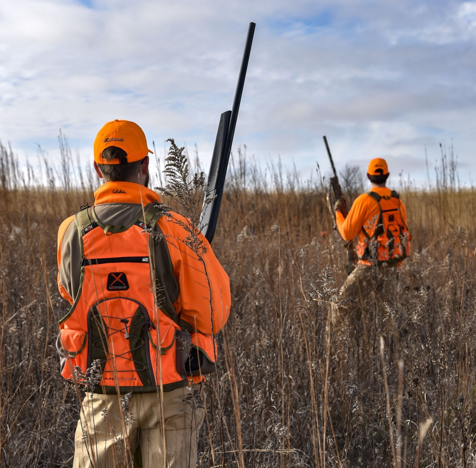 upland bird hunting-746841-edited